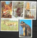 Набор календариков. Фото животных. 1990 г. 5 шт.