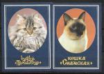 Набор календариков. Кошки. 1989 г. 2 шт.