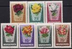 Венгрия 1962 год. Сортовые розы. 7 марок