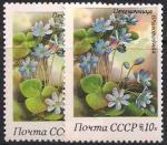 СССР 1983 год. Печеночница благородная (5331). Разновидность - темный зеленый цвет (правая марка)