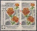 СССР 1960 год. Купальница азиатская (2411). Разновидность - сдвиг рисунка, светлый цвет, фон на марке слева