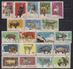 Куба 1964 год. Животные Гаванского зоопарка. 20 гашёных марок