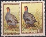 СССР 1957 год. Серая куропатка (1906). Разновидность - темный цвет и фон на правой марке