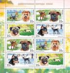 Россия 2019 год. Декоративные породы собак, лист