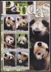 Бенин 2003 год. Панда. 1 блок