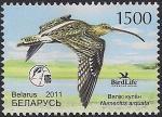 Беларусь 2011 год. Птица года. Большой кроншнеп. 1 марка (042.548)