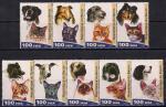 Бенин 2003 год. Кошки и собаки. 9 марок