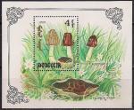 Монголия 1991. 1990 год. Грибы. Блок