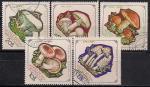 Монголия 1964 год. Грибы. Неполная серия (5 гашеных марок из 8)