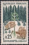 Франция 1965 год. Лесовозобновление. Саженец сосны. 1 марка