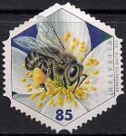 Швейцария 2011 год. Медоносная пчела. 1 марка