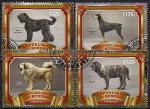 Бурунди 2017 год. Собаки. 4 гашеные марки