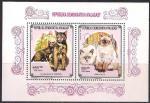 Мадагаскар 1991 год. Домашние животные. Кошки (208.1325). Блок