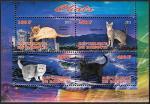 Кошки, Джибути 2013 год, малый лист.