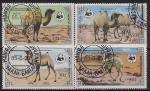 Монголия 1985 год. Верблюды. 4 гашёные марки