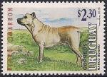 Уругвай 1995 год. Собаки. 1 марка (н)