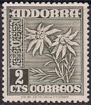 Андорра 1951 год. Цветы. Эдельвейс. 1 марка из серии с наклейкой (н-л 2)