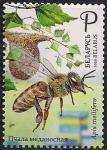 Беларусь 2020 год. Пчеловодство в Беларуси. 1 марка (BY1095)