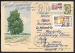 Иллюстрированная односторонняя почтовая карточка № 7-47, 1963 год. Березки , прошла почту