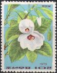 КНДР 1973 год. Цветущая магнолия. 1 марка