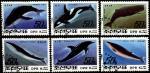КНДР 1992 год. Киты и дельфины. 6 гашеных марок