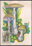 Картмаксимум. Ядовитые грибы. Бледная поганка, 15.05.1986 год, Москва почтамт