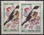 СССР 1981 год. Большой чекан (5157). Разновидность - темный зеленый цвет на правой марке (Ю)