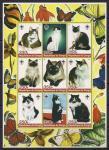 Конго 2005 год. Кошки. 1 лист