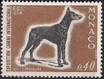 Монако 1970 год. Международная выставка собак в Монте-Карло. Собака породы доберман. 1 марка