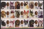 Афганистан 2003 год. Кошки и собаки. 9 марок