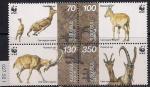 Армения 1996 год. Безоаровый козёл. Сцепка 4 марки (027.50 I)