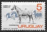 Уругвай 1971 год. Местная порода лошади, 1 марка