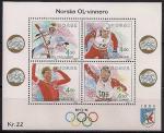 Норвегия 1994 год. Норвежские олимпийские чемпионы, участники зимних Олимпийских игр в Лиллехаммере. Блок