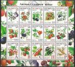 Беларусь 2004 год. 7-й стандартный выпуск. Лесные и садовые ягоды (042.284). Малый лист