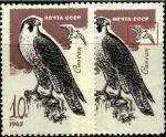 СССР 1965 год. Сапсан (3200). Разновидность - сдвиг чёрного вниз (Ю)