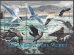 Сьерра-Леоне 2000 год. Морские птицы всего мира, малый лист