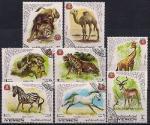 Йемен 1969 год. Дикая фауна. 8 гашеных марок