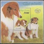 Вьетнам 1990 год. Международная филвыставка. Собаки. 1 гашёный блок