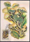 Картмаксимум. Ядовитые грибы. Ложноопенок серно-желтый, 15.05.1986 год, Москва почтамт