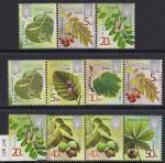Украина 2015 год. Стандарт. Листья и плоды листопадных деревьев. 11 марок