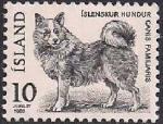 Исландия 1980 год. Исландская лайка (ном. 10). 1 марка из серии