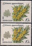 СССР 1980 год. Охраняемые породы деревьев. Крушиновидная облепиха. 2 марки с разновидностью. Разный цвет