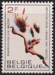 Бельгия 1973 год. За пожаробезопасную промышленность. 1 марка