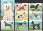 Куба 1992 год. Собаки (186.3559). 7 марок + блок