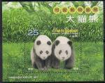 Тайвань (Китай) 2009 год. Панды. Блок (н