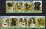 Конго 2005 год. Породы охотничьих собак. 9 марок