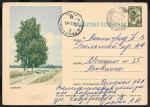 Иллюстрированная односторонняя почтовая карточка № 7-47, 1963 год. Березки. Прошла почту
