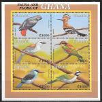 Гана 2000 год. Местная фауна, птицы, малый лист