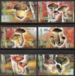 Чад 2012 год. Грибы 3. 6 марок