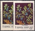 СССР 1982 год. Голубика (ном. 6к). Разновидность - разный фон